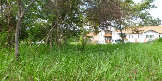 FLAT LOT NEAR CORONADO GOLF