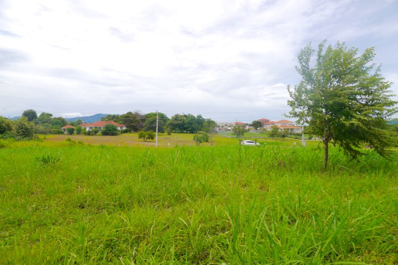 LOT IN PALMERAS DEL GOLF