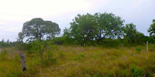 NICE LOT IN LAS LAJAS