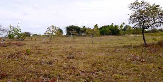 LAND IN JUAN DIAZ
