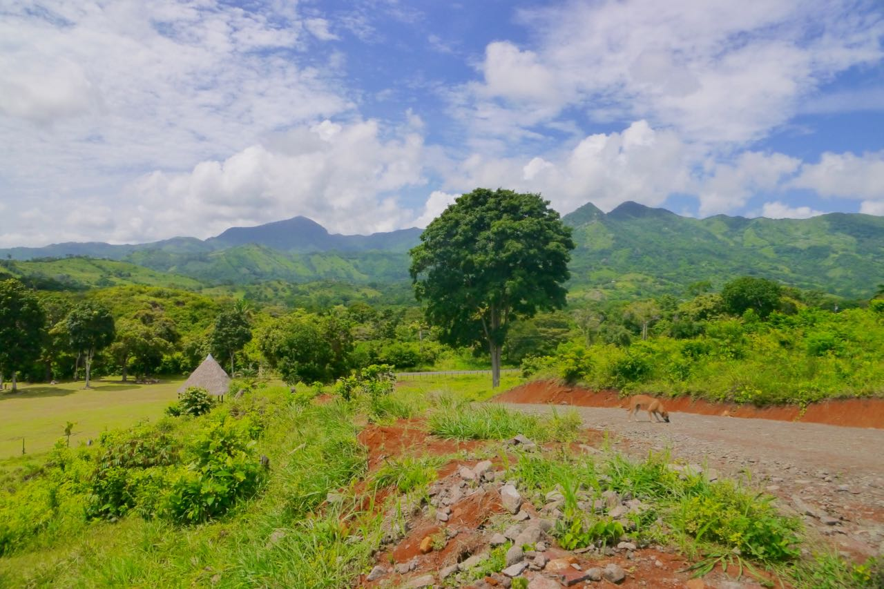 BEAUTIFUL PIECE OF LAND IN LIDICE