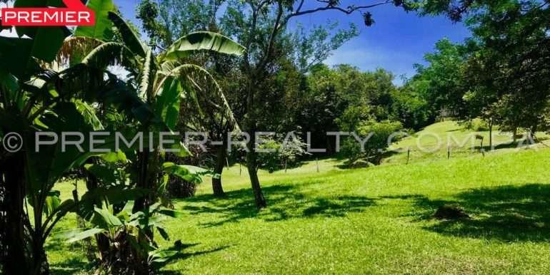 PRP-L1702-171 - 2Panama Real Estate