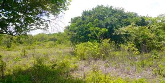 LAND IN PUNTA BARCO NUEVO
