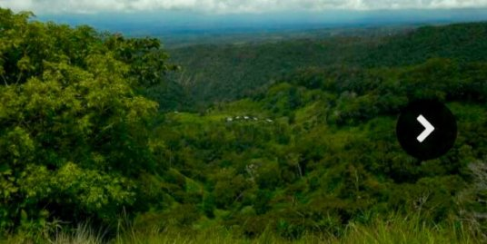 LAND IN CHIRIQUI WITH SPRING WATER