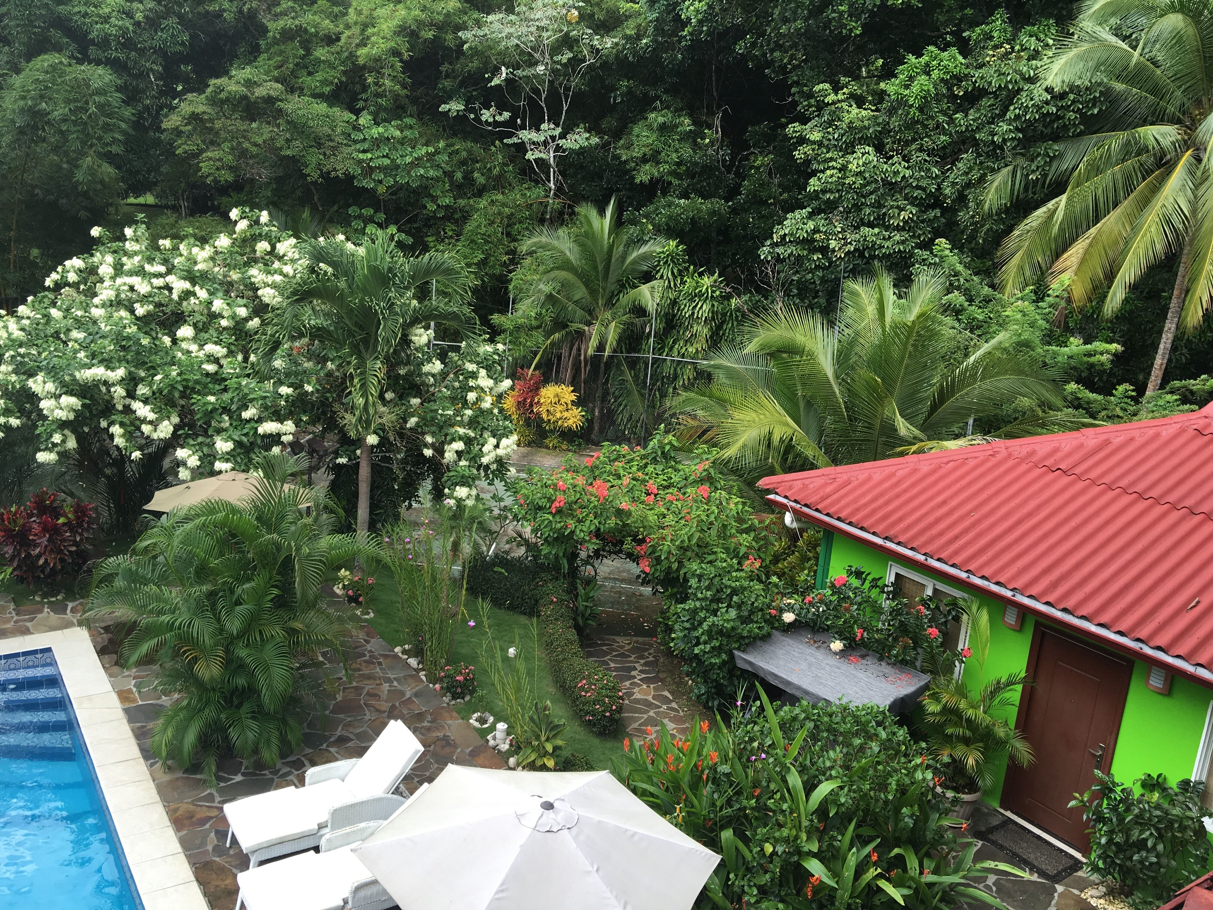 COCONUT LODGE BED & BREAKFAST