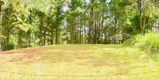 PERFECT CORNER LOT IN THE HEIGHTS OF ALTOS
