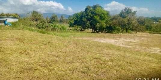 PLOT OF LAND IN TANARA