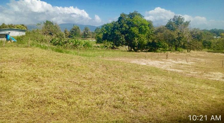 PLOT OF LAND IN TANARA