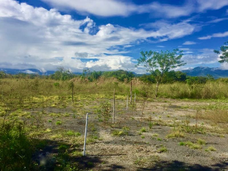 7,000 m2 LAND MINUTES AWAY FROM PENONOME