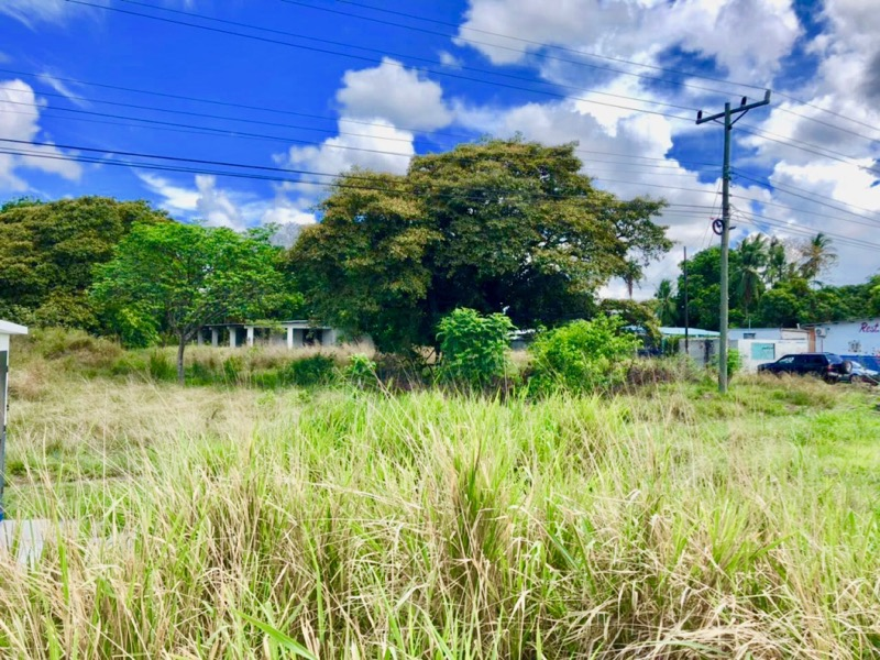 EXCELLENT LOCATION WITH PAN-AMERICAN FRONTAGE