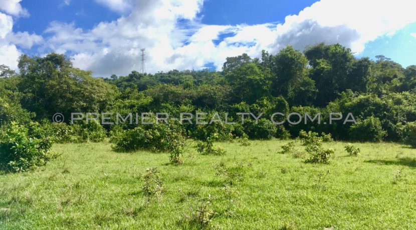F1810-101 - 12 panama real estate