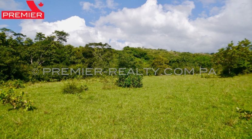 F1810-101 - 46 panama real estate
