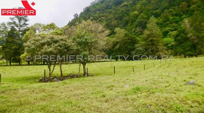 L1810-131 - 2 panama real estate