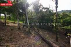 L1902-151 - 9 panama real estate