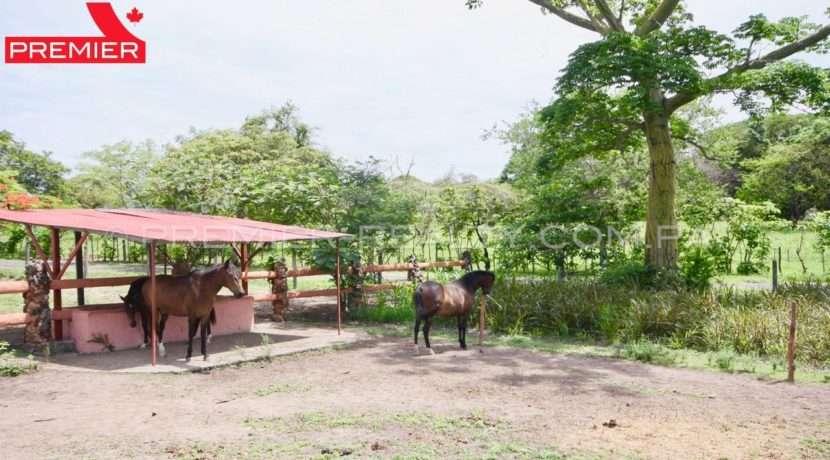 PRP-C1905-251 - 28Panama Real Estate