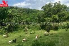 PRP-F1905-041 - 2Panama Real Estate