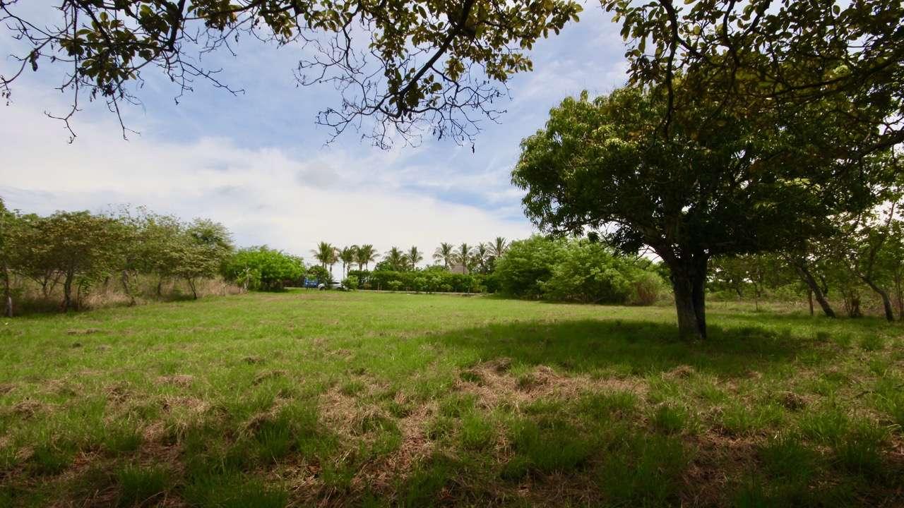 FARM IN PUNTA BARCO VIEJO