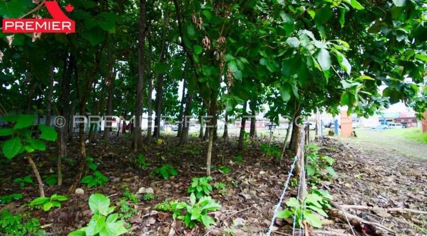 PRP-L1906-196 - 4Panama Real Estate