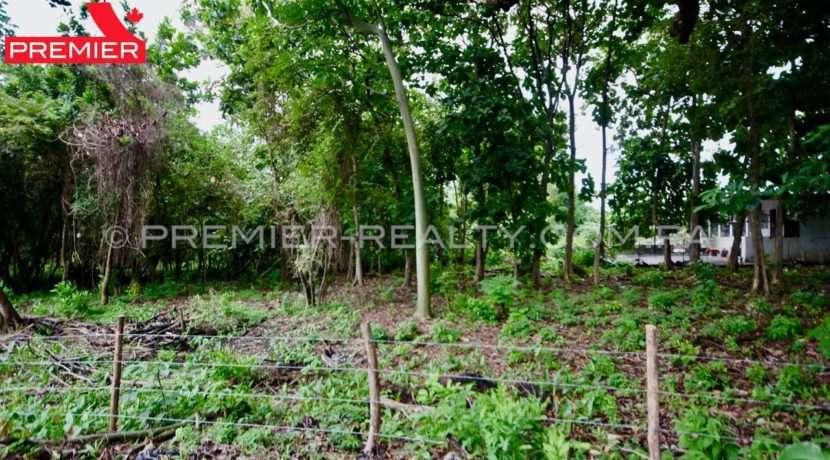 PRP-L1906-196 - 5Panama Real Estate
