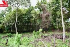 PRP-L1906-196 - 6Panama Real Estate