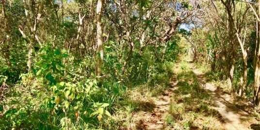 LAND IN TRANQUILLA – ANTON