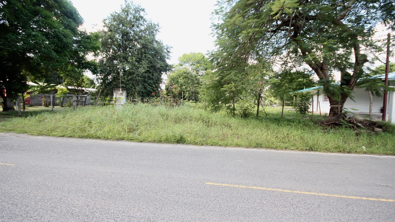 LOT IDEAL FOR BUSINESS IN COLONCITO