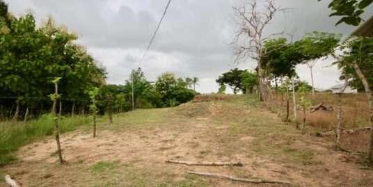 LAND TO BUILD – GUABAS ARRIBA – ANTÓN