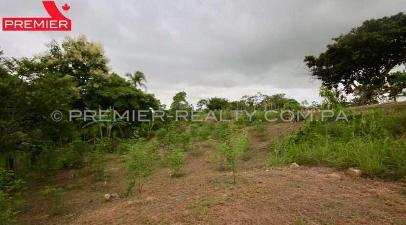 L2010-082 - 8 panama real estate