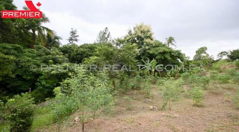 L2010-082 - 9 panama real estate