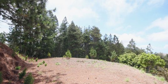 BUILDABLE LOT WITH OCEAN VIEW