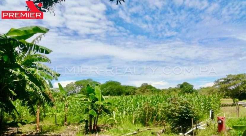 PRP-F2104-231 - 1Panama Real Estate