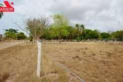 PRP-L2104-161 - 10-Panama Real Estate