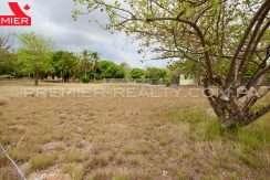 PRP-L2104-161 - 7-Panama Real Estate