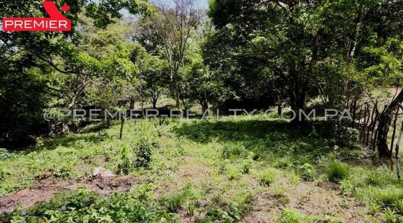 PRP-L2104-272 - 10-Panama Real Estate
