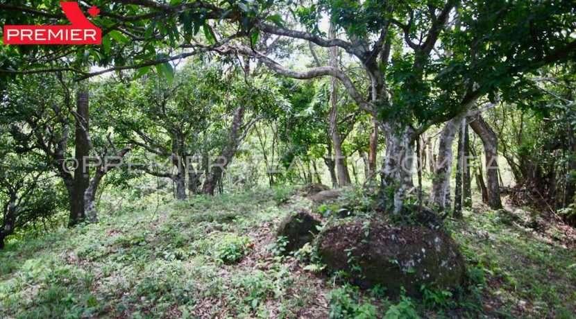 PRP-L2104-272 - 20-Panama Real Estate
