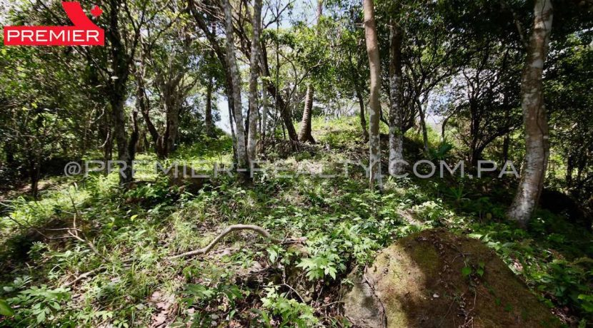PRP-L2104-272 - 25-Panama Real Estate