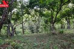 PRP-L2104-272 - 45-Panama Real Estate