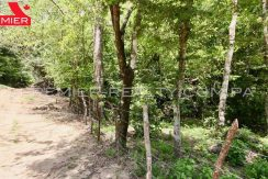 PRP-L2104-272 - 5-Panama Real Estate