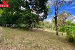 PRP-L2105-071 - 12-Panama Real Estate